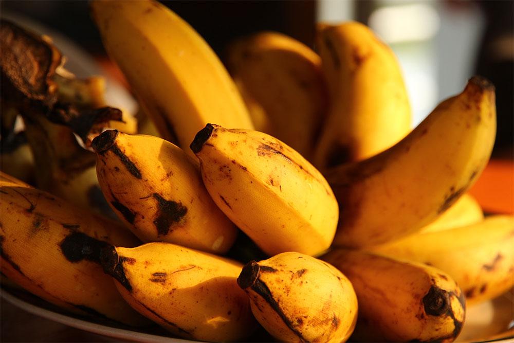 food waste save money groceries