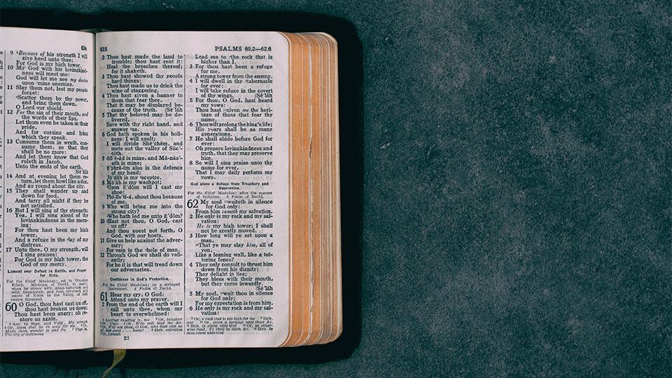 bible study reading plans