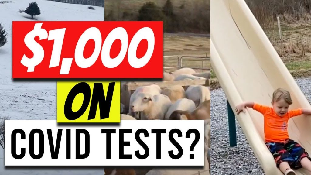 COVID Tests, Time in the States, Sheep Farm and More (Family Vlog)